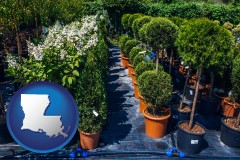louisiana map icon and shrubs and trees at a nursery