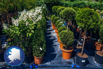 shrubs and trees at a nursery - with Alaska icon