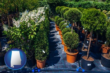 shrubs and trees at a nursery - with Alabama icon