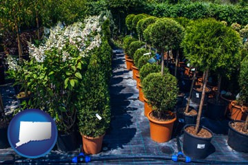 shrubs and trees at a nursery - with Connecticut icon