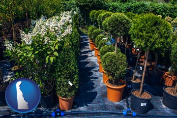 shrubs and trees at a nursery - with Delaware icon