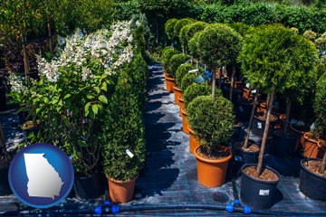 shrubs and trees at a nursery - with Georgia icon