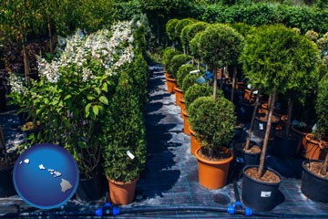 shrubs and trees at a nursery - with Hawaii icon