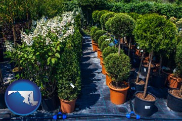 shrubs and trees at a nursery - with Maryland icon