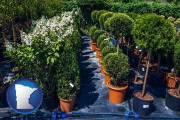 shrubs and trees at a nursery - with Minnesota icon