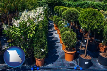 shrubs and trees at a nursery - with Missouri icon