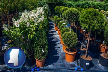 shrubs and trees at a nursery - with Mississippi icon