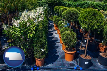 shrubs and trees at a nursery - with Nebraska icon