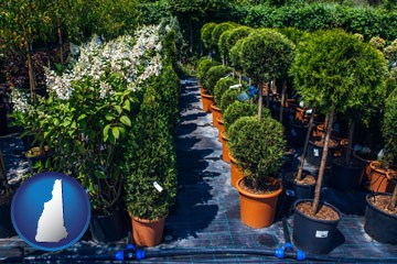 shrubs and trees at a nursery - with New Hampshire icon