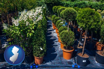 shrubs and trees at a nursery - with New Jersey icon