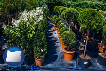 shrubs and trees at a nursery - with Oregon icon