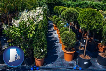 shrubs and trees at a nursery - with Rhode Island icon