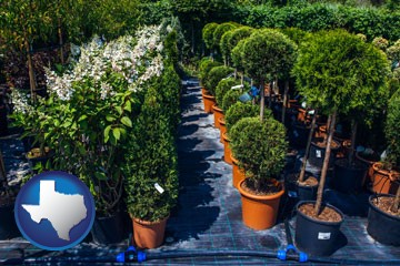 shrubs and trees at a nursery - with Texas icon