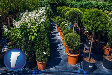 shrubs and trees at a nursery - with Vermont icon