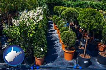 shrubs and trees at a nursery - with West Virginia icon